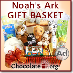 Noah's Ark Baby Shower Gift Basket